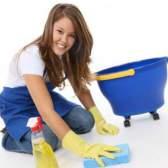 Как избавиться от домашних мошек?
